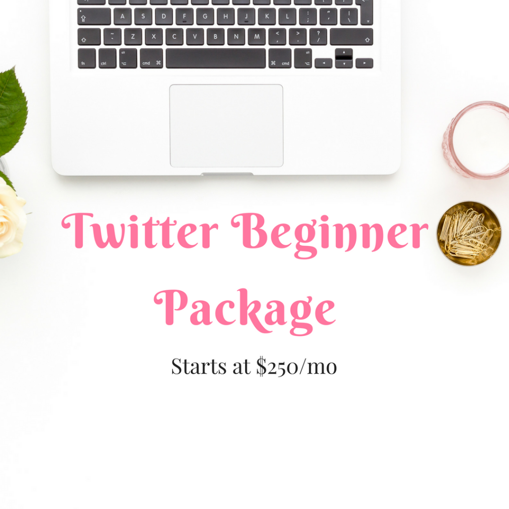 Twitter Package | Christina Virtual Solutions